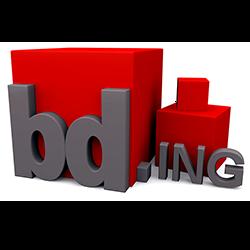 bd;ing logo